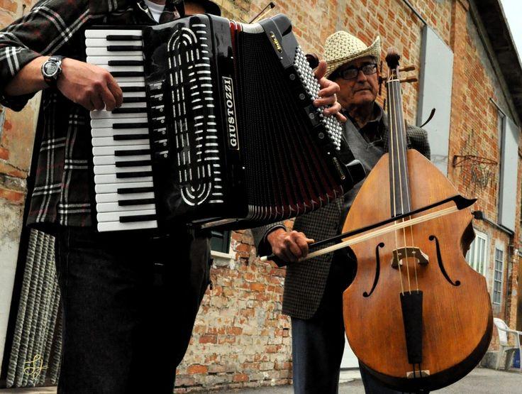 Cod A04 Violone e Fisarmonica | Cantamaggio 2011