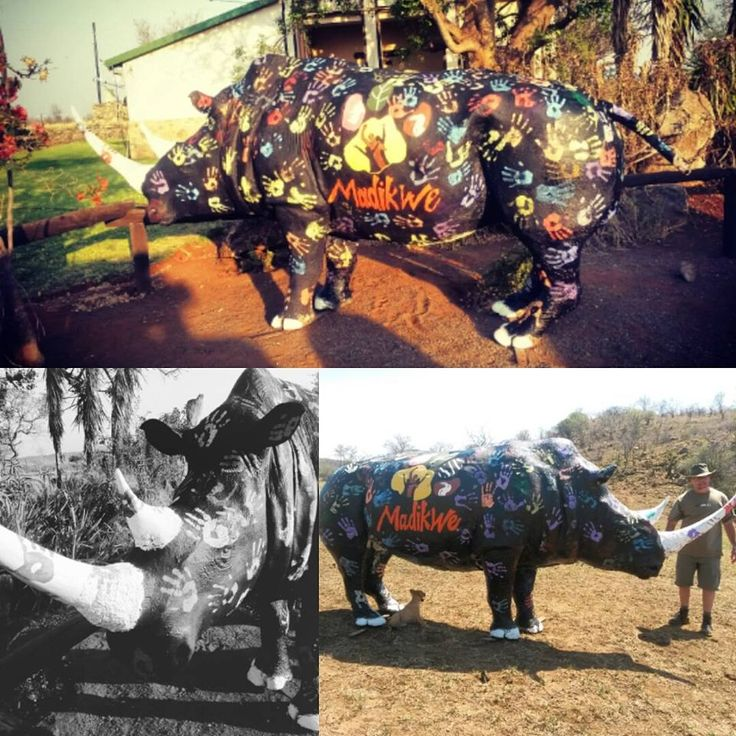 The life size rhino that was present at the rhino walk. Hands for rhinos Photo credit : Chantelle Terblanche
