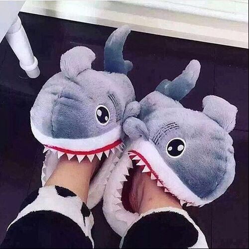 shark, shoes, and slippers image