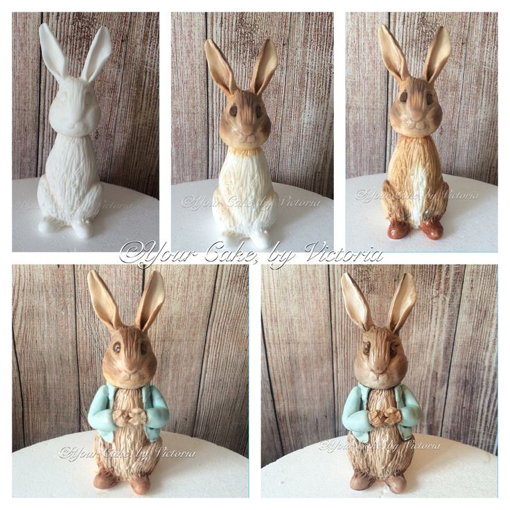 A step by step painted Peter rabbit cake topper progression photo.. He's made from Sugarpaste and painted using edible dusts and food colouring mixed with lemon extract