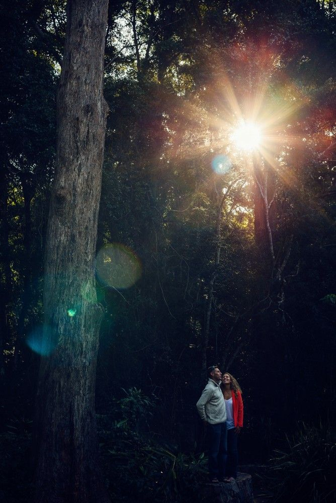 Flaxton Gardens, swirltography, engagement, photographer,