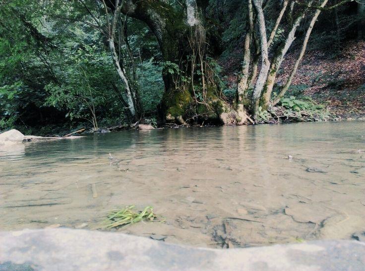 River in Ighiel, Alba county, Romania