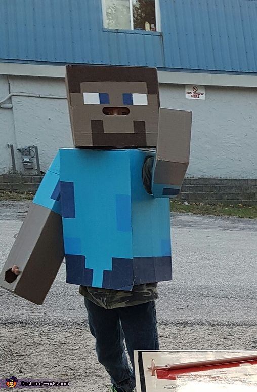 Tina: My nephew wanted to be Steve from mind craft so his dad built it for him out of cardboard and pant.