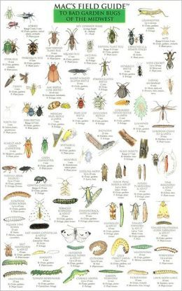 Mac's Field Guide to Bad Garden Bugs of the Midwest by Craig MacGowan: Full-color, detailed illustrations on laminated, waterproof cards. #Field_Guide #Bad_Garden_Bugs #Midwest