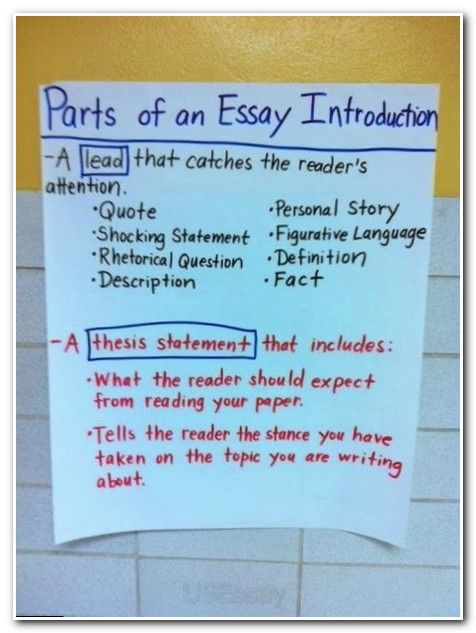 Understanding the purpose of compare and contrast essay on two friends