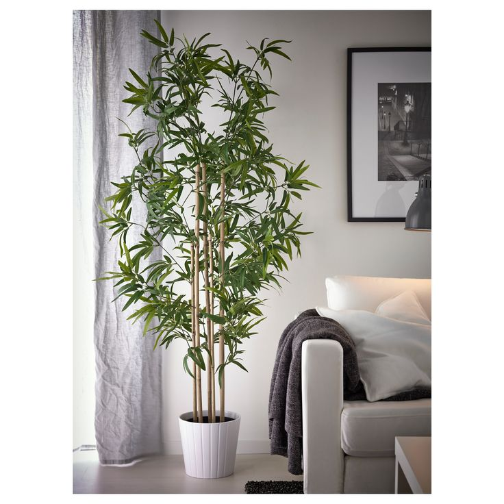artificial potted plant fejka bamboo products catalog and bamboo. Black Bedroom Furniture Sets. Home Design Ideas