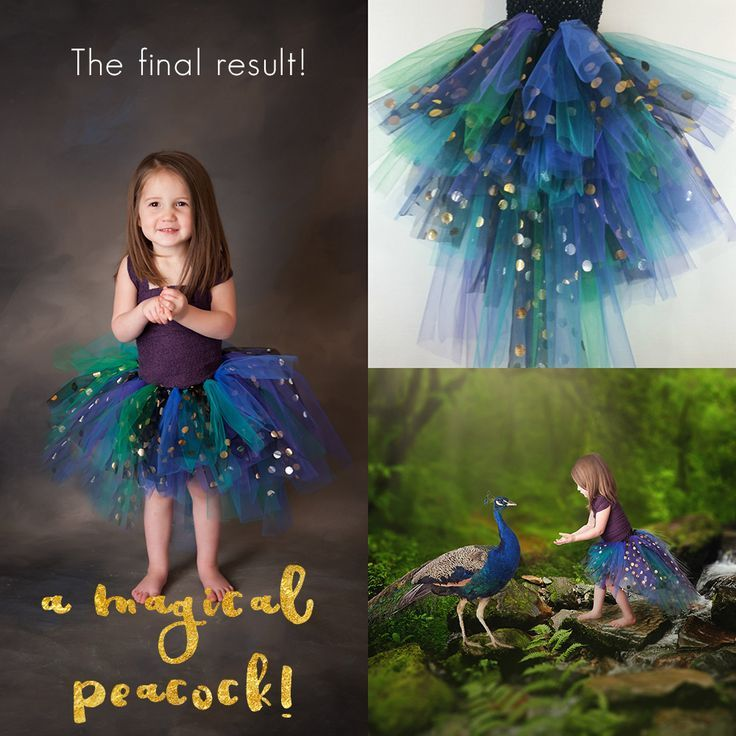 Peacock tutu dress DIY! What about a peacock themed girls birthday party or a peacock themed photo shoot! (Peacok mini session?!)