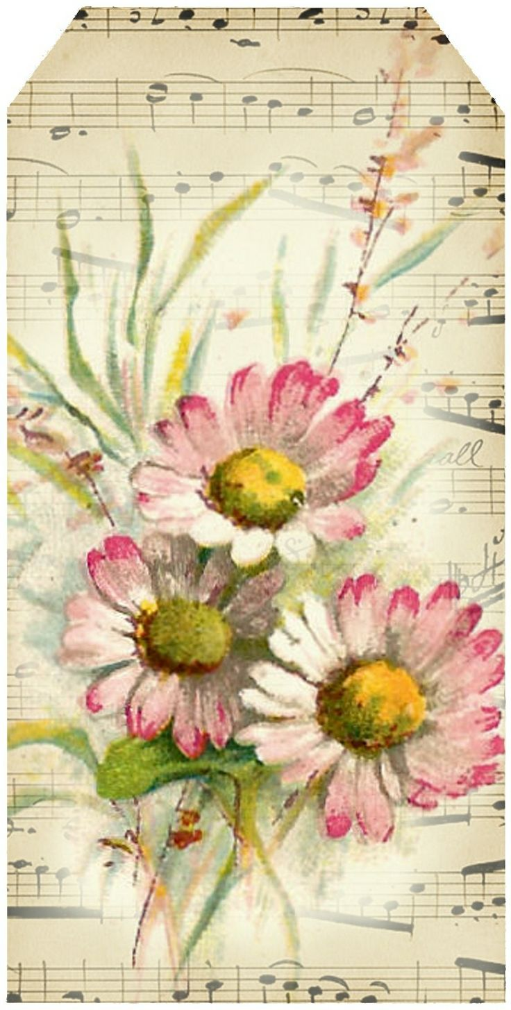 Bright-eyed Daisies ~ tag 4, featuring pink daisies and French sheet music.
