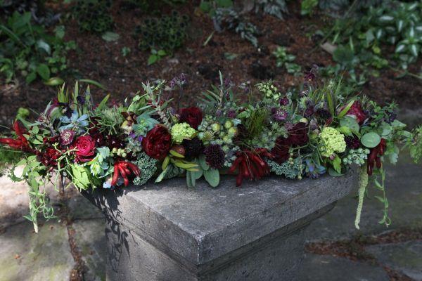 a amaranthus, columbine, peonies, cerinthe, kale, blueberries, astrantia, Françoise Weeks