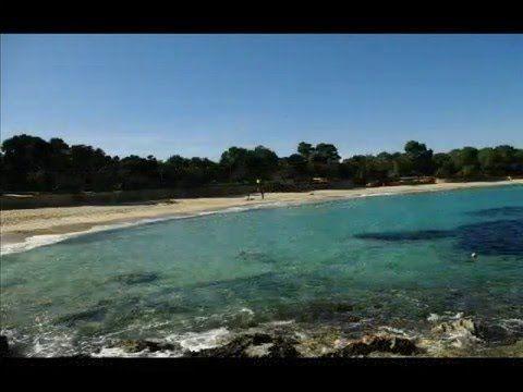 Fotos de: Islas Baleares - Ibiza - Cala Bassa y Cala Codolar