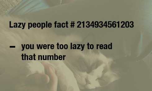 Lazy factFunny Things, Laugh, Numbers, Random Things, Lazy Facts, Funny Stuff, Humor, General Stuff, True Stories