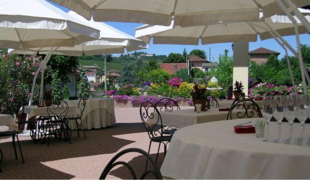 Massucco - #Piemonte #Piedmont http://www.wineandtravelitaly.com/en/vineyard/1218-massucco-azienda-agr-flli.html?recherche=1 #wine #travel #italy #winery #vacation
