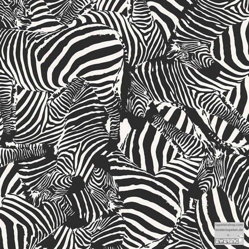 Tiere, Papier-Tapete, Zebras, Jugendzimmer