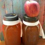 Crock-Pot Apple Pie Moonshine