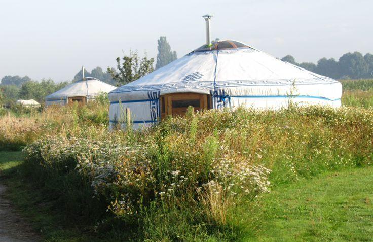 Zerofield is kleinschalige ecologische glamping in Nederland, Brabant, waar je in een yurt overnacht. Boek direct bij de aanbieder!