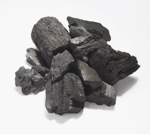 True 'Cue Premium Hardwood Lump Charcoal