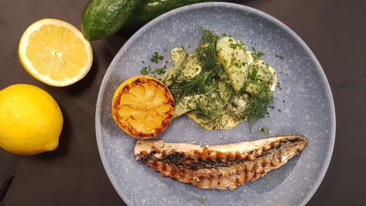 Opskrift på skindstegt makrel med stuvede agurker af Adam Aamann. Makrel på grill er perfekt sommermad. Opskriften er fra Madmagasinet på DR1.