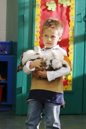 i want chester the rabbit from one tree hill! <3 omg