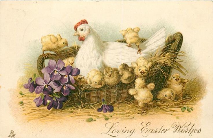 LOVING EASTER WISHES  hen in basket with many chicks, violets front left