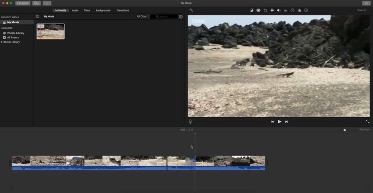 Unfortunately Iguana being chased by Snakes scene was edited in a misleading way :( Sequence of events were not accurate/may have been two different Iguanas. I tried my best to identify it on iMovie just as a real detective would do.