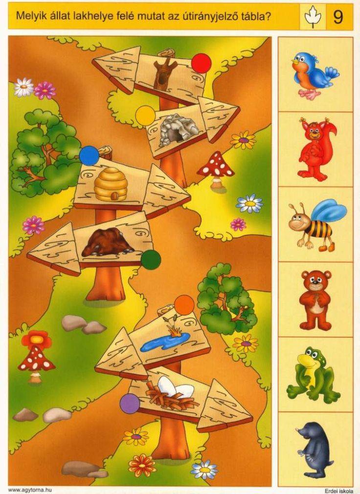 Piccolo: blad kaart 9