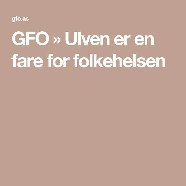 GFO  » Ulven er en fare for folkehelsen