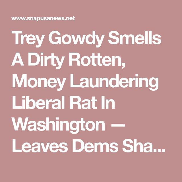 Trey Gowdy Smells A Dirty Rotten, Money Laundering Liberal Rat In Washington — Leaves Dems Shaking In Their Boots – SNAP USA NEWS