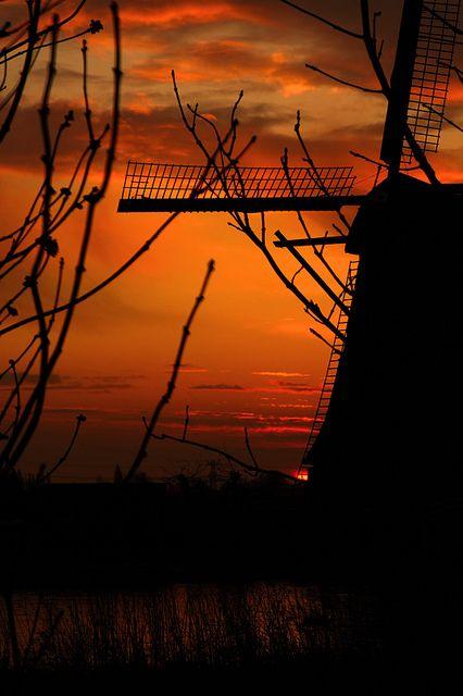 Sunrise in windmill, Kinderdijk, South Holland, Netherlands