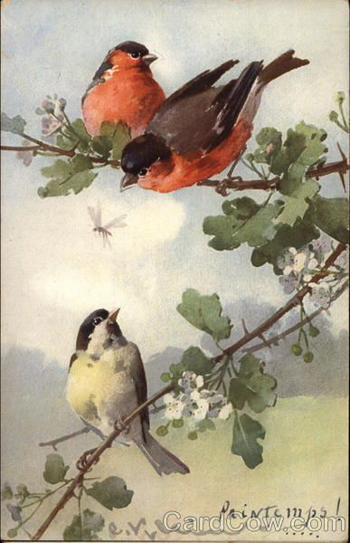 """""""Said the robin to the sparrow, 'I should really like to know  why these anxious human beings rush about and worry so.'    Said the sparrow to the robin, 'Friend, I think that it must be  that they have no Heavenly Father such as cares for you and me.'"""""""