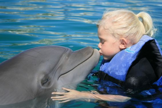 Dolphin Encounters for Kids and Families- US, Mexico, & Caribbean