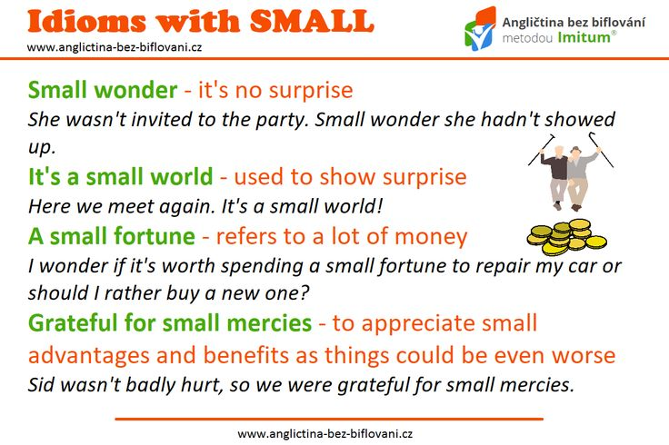 Idiomy jsou nedílnou součástí angličtiny, bez jejich znalosti se neobejde žádný pokročilejší student. 📖🎓 #anglictina #idiomy #small