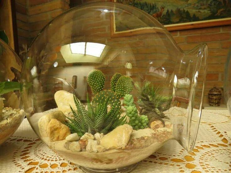 25 Trending Mini Cactus Plants Ideas On Pinterest Crochet Art Suculent Plants And Terrarium Diy