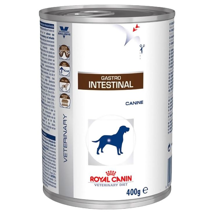 Animalerie  Royal Canin Gastro Intestinal  Veterinary Diet pour chien  24 x 400 g