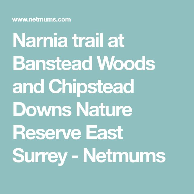 Narnia trail at Banstead Woods and Chipstead Downs Nature Reserve East Surrey - Netmums