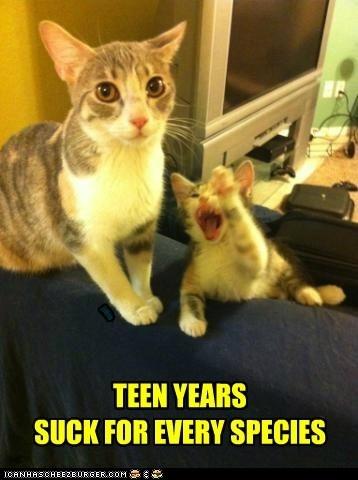 Teen years suck