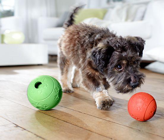 Piłka #snack #ball #tchibo