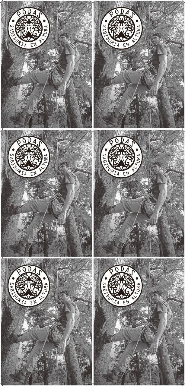 Flyer Nuevo Tamanio.pdf