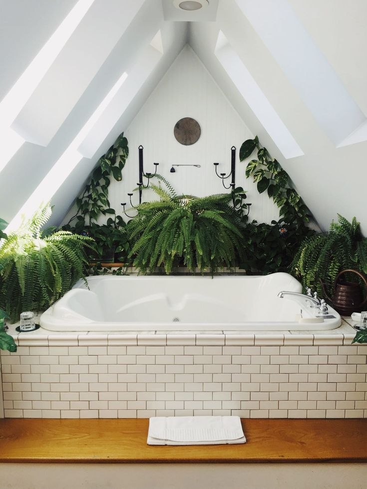 How to shape the plant wall of your dreams