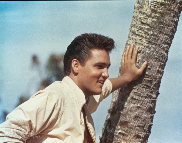 ♡♥Elvis Presley outside♥♡