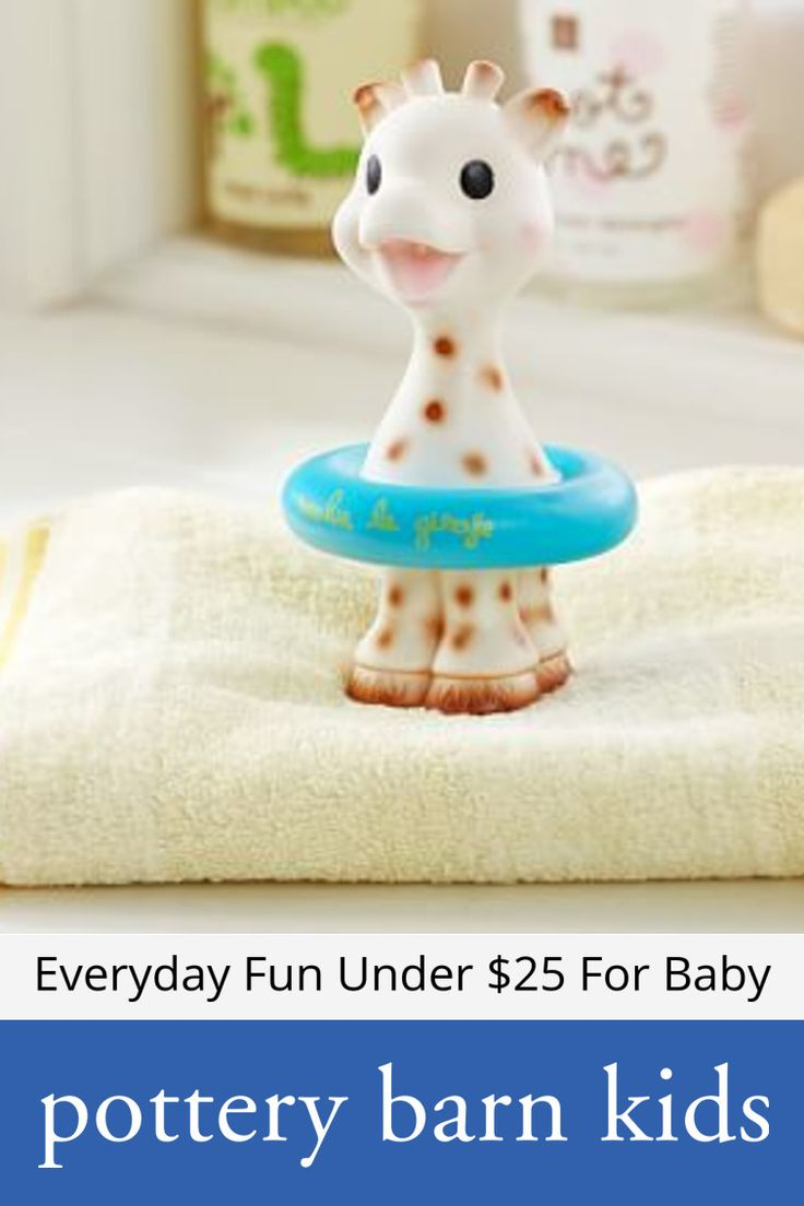 Everyday Fun Under $25 For Baby