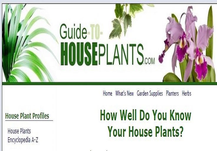 GUIDE TO HOUSEPLANTS - - How well do you know your houseplants? - * Encyclopedia A-Z, * Easy houseplants, * Pests & diseases, * Poisonous plants, & * Tropical houseplants.