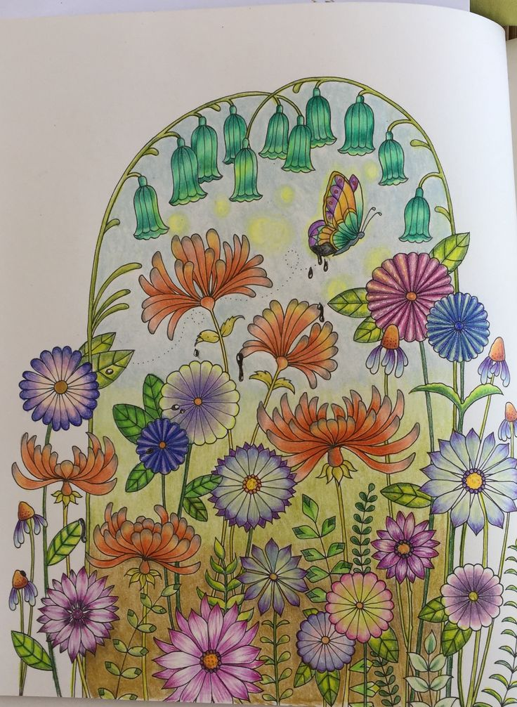 Johanna Basford Colouring Coloring Books Art Therapy Ivy Butterflies Vintage Pages Plants