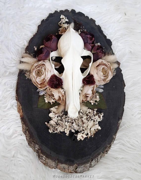 Vegan Replica Coyote skull Original Art Spirit Animal