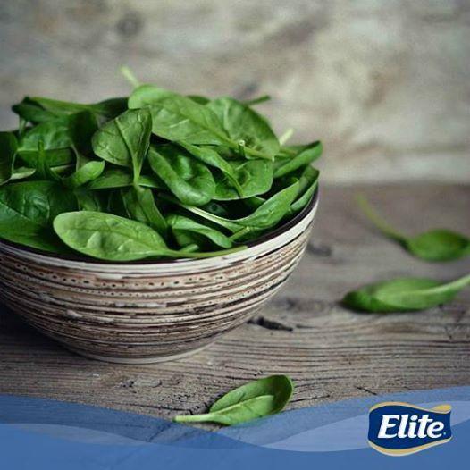 Conoce los beneficios de la espinaca: -Contienen minerales, antioxidantes, vitaminas y ácidos grasos omega3. -Son ideales para una dieta porque no tienen grasas. - Ayudan a prevenir enfermedades degenerativas.