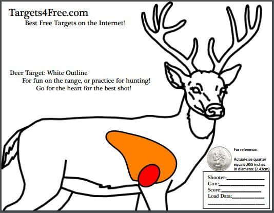 Deer Target with vitals (heart and lungs) by Targets 4 Free. White outline version saves ink. #guns #shooting #hunting #target #targets #free #printable #targets4free