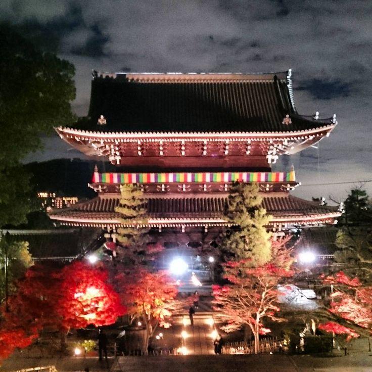 #ブラデム#金戒光明寺#山門 #黒谷さん#ライトアップ#夜景 #京都が好き#やっぱりここが好き#ありがとう#京都#秋#紅葉 #kyoto#japan#kurotanisan #autumn#nightview#enjoy  ピコ