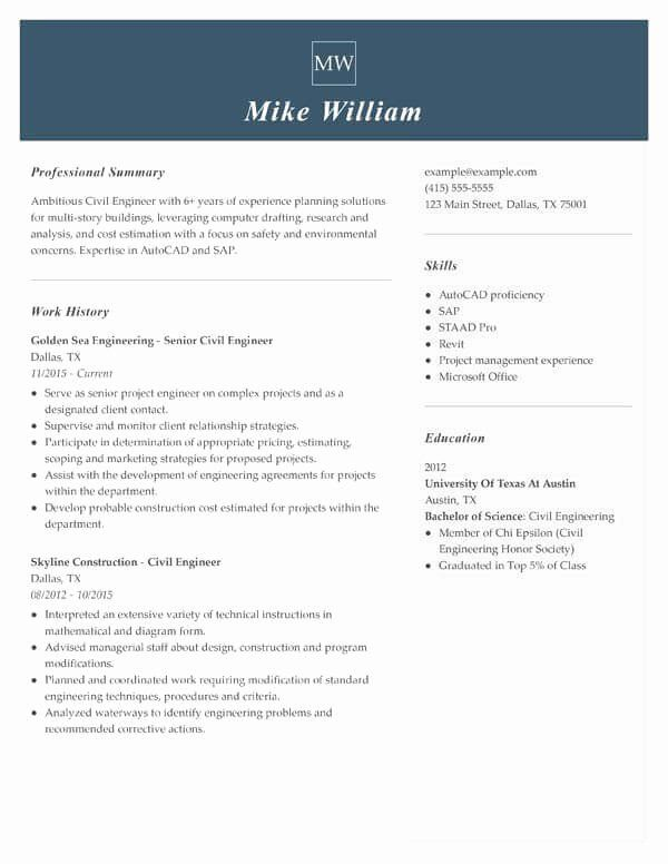 Strong Resume Headline Examples New How To Write Your Resume Summary Statement Job Resume Examples Job Resume Samples Teacher Resume Examples