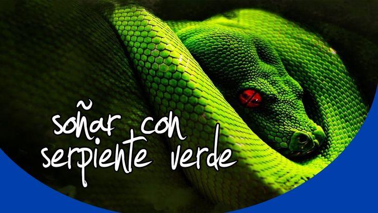 ¿Qué significa soñar con serpiente verde? | El significado de los sueños...