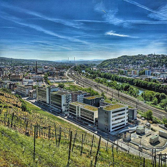 Hengstenberg Esslingen esslingen aus den terrassenweinbergen #esslingen #hengstenberg
