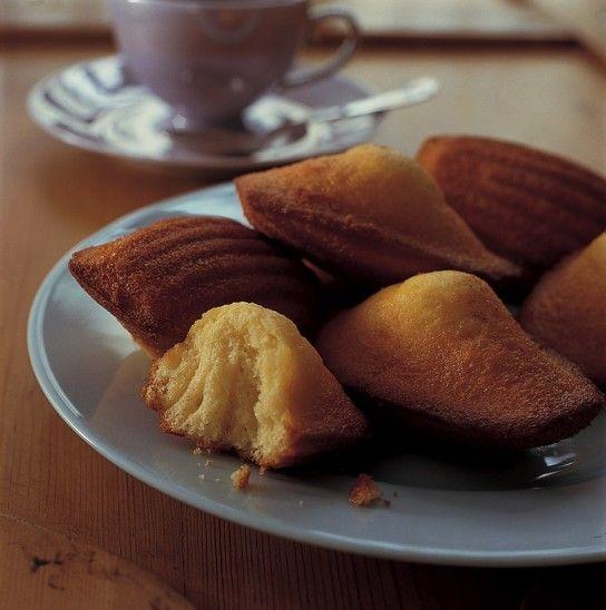 Lemon Madeleines :: swap meyer lemon zest in.